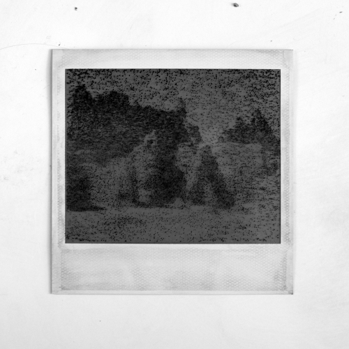 Polaroid-I