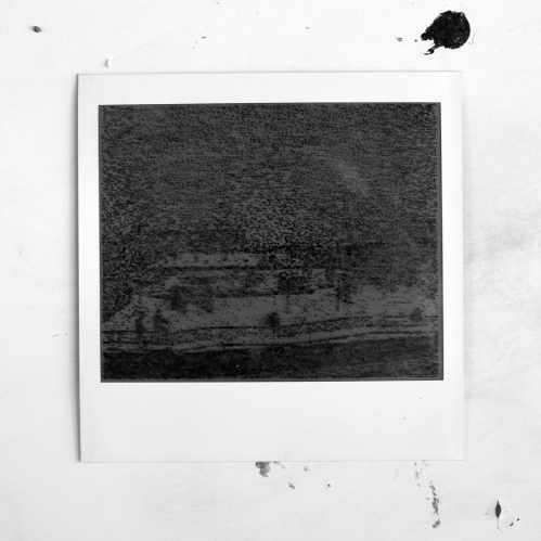Polaroid-II