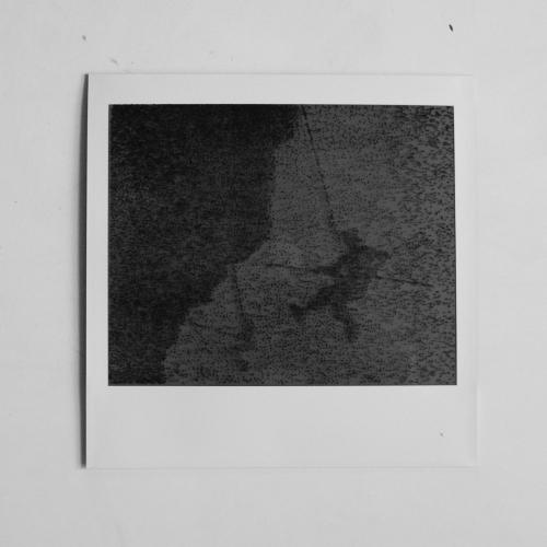Polaroid-IV